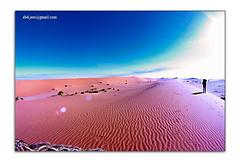 ضمأ (Abdullah AlJasser) Tags: بر كشته رحلة صحراء رمال رمل نفود براري