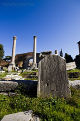"""Roman Forum • <a style=""""font-size:0.8em;"""" href=""""http://www.flickr.com/photos/89679026@N00/6980278633/"""" target=""""_blank"""">View on Flickr</a>"""