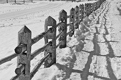 fence in the snow (giancarlo.guadagnini) Tags: