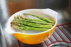 365/12 - asparagus (thisemily) Tags: orange green dinner sink vegetable asparagus 365 soaking 50mmf18 project365 pyrexbowl alsothisisprobablymyalltimefavoritebowl localornotlocal iroastedthisasparagusanditcameoutdelicious