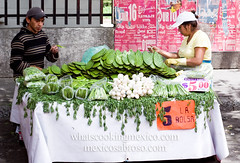 "Nopales • <a style=""font-size:0.8em;"" href=""https://www.flickr.com/photos/7515640@N06/7043394477/"" target=""_blank"">View on Flickr</a>"