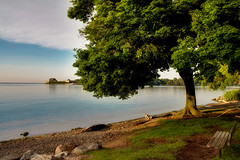 Niagara-On-The-Lake, Ontario (Artur Staszewski) Tags: lake ontario canada tree green beach water grass stone canon bench wine sigma calm niagara xs niagaraonthelake vinyards 1770mm winaries