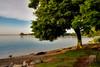 Niagara-On-The-Lake, Ontario (Artur Staszewski) Tags: lake ontario canada tree green beach water grass stone canon bench wine sigma calm niagara xs niagaraonthelake vinyards 1770mm winaries