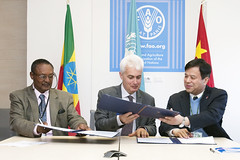 12023h9791 (FAO News) Tags: china italy rome europe ethiopia agreements signingceremony southsouthcooperationssc technicalcooperationprogrammetcp assistantdirectorgeneraladg