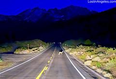 High Sierra...i don't need no stinkin' deer crossing!