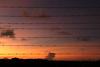 Natureza em Pauta de Sol Menor Farpada (guilhermeweberdelima) Tags: pordosol sol do natureza laranja paisagem céu pôrdosol musica música menor entardecer crepúsculo arame farpado pôr pauta escurecer