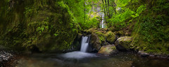 'Downriver' - Elowah Falls, Oregon (Gavin Hardcastle - Fototripper) Tags: trees panorama usa green oregon creek waterfall moss rocks panoramic falls pan columbiarivergorge elowah gavinhardcastle fototripper