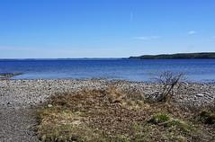 Hytiinen - Finland (s.niemelainen) Tags: lake nature suomi finland landscape sony north maisema luonto jrvi karjala hytiinen kontiolahti carelia pohjois puntarikoski hiknniemi sonya6000