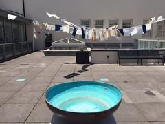 IMG_3060 (Thacher Gallery at the University of San Francisco) Tags: contemporaryart artinstallation environmentalart usfca sculptureterrace thachergallery worldsinthemaking christinaconklin