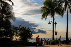 Waikiki Beach in the afternoon (Victor Wong (sfe-co2)) Tags: city sky people usa plant tree green beach public landscape hawaii seaside warm waikiki oahu outdoor dramatic tourists palm shore tropical destination environment honolulu avenue relaxed visitor pleasant kalakaua
