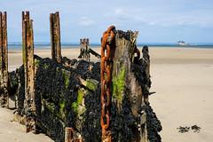 Bembridge Harbour (Speedy349) Tags: rust harbour chain isleofwight groyne bembridge
