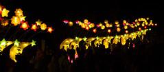 _DSC9721_2 (Elii D.) Tags: light fish flower animal night zoo monkey neon dragons lantern lampion dargon
