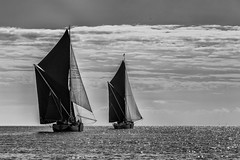 Monochrome Barges (Eddie Hyde) Tags: thames barges racing sailing thamesestuary