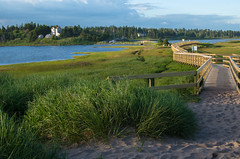 the way to conrad's beach (angie pineappletree) Tags: beach summer evening boardwalk lawrencetown halifax novascotia canada grass water trees sand