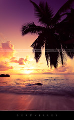 Seychelles sunset (Beboy_photographies) Tags: canon de soleil mark coucher ii 5d seychelles plage indien paradis palmier cocotier ocan paradisiaque seychelle magicalskies