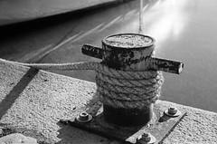 (fummel) Tags: film analog kodak sweden stockholm 400tx bessar stermalm strandvgen jupiter8 d7611 filmdev:recipe=8050