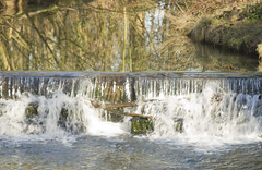 Coombe Abbey waterfall (Simon Redhead Photography) Tags: swans waterfalls coventry greyhounds streetcandids sigma2470 coombeabbey focusonimaging canon7d forestryworkers