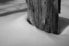 Drifting Round (peterkelly) Tags: trip camping winter shadow bw snow ontario canada tree digital guelph trunk northamerica 2012 northernontario algonquinprovincialpark celp uppergranddistrictschoolboard communityenvironmentalleadershipprogram