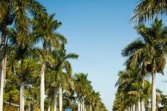 FLORIDA10-28