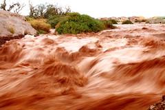 Crecida del río Loa (Mik Chile) Tags: chile storm rain miguel canon lluvia mark ii tormenta 5d invierno fuentes silva markii calama boliviano eletrica altiplánico mikchile