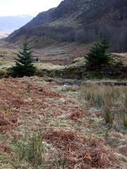 Missing military bridge (nz_willowherb) Tags: see scotland tour perthshire visit tourist glen visitor killin ogle to go visitkillin seekillin gotokillin