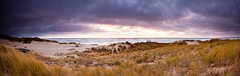 Purple skies (bloung) Tags: california beach clouds canon landscape stitch pano hard 9 panoramic filter lee 1740l gnd 5d2