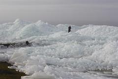 IMG_9169 (neeltjevanderweide) Tags: winter fryslan hindeloopen ijs kruiendijs februari2012