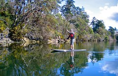 sup31 (vikapproved) Tags: up vancouver island stand whisper bc board paddle columbia victoria evergreen british paddling legend sup