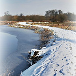 A Winter Walk thumbnail