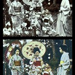 KIMONO PATTERNS Seen in the Horikiri Iris Gardens of Old TOKYO, JAPAN -- Or, The Effect of HALFTONE Conversion on Image Details) thumbnail