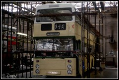 Back Home (Zippy's Revenge) Tags: paint metro leyland metrobus atlantean 6407 7706 gmbuses northerncounties gmn ncme wypte yorkshirerider boltondepot an68 gmbusesnorth crookstreet rja706r rja707r
