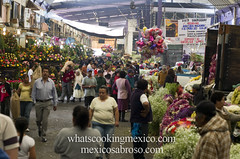 "Mercado • <a style=""font-size:0.8em;"" href=""https://www.flickr.com/photos/7515640@N06/6931459801/"" target=""_blank"">View on Flickr</a>"