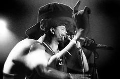 Roaz 1996 /