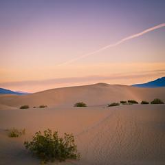 Sand and Sky (JJide) Tags: california ca sky dawn nationalpark sand streak dunes olympus mesquite deathvalley shrub dvnp epl1