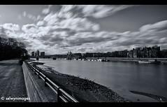 View from Battersea Park (iainsr) Tags: longexposure blackandwhite bw battersea riverthames 1740 londonbridges albertbridge londonparks nd110 bw110 bwnd110