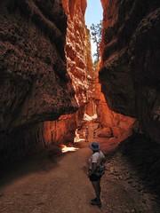 People Watching (rovingmagpie) Tags: geotagged utah bryce wallstreet brycecanyon hoodoos sunsetpoint brycecanyonnationalpark navajolooptrail cdtw2011 geo:lon=11216588259755326 geo:lat=3762145639875772