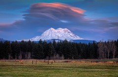 Lenticular Sunset Over Mt Rainier (Fresnatic) Tags: sunset mountrainiernationalpark pacificnorthwest washingtonstate mtrainier hdr eatonville lenticularclouds rurallandscapes canonrebelxsi fresnatic photoshopcs5