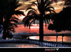 amanecer en la playa ............santa pola (alicante) (joxe@n) Tags: travel family las parque wedding party españa costa naturaleza color sol colors azul del de puerto arbol noche la mar spain agua nikon plantas y alba playa colores alicante paseo amanecer cielo nubes nocturna nikkor nocturnas ocaso pola famili santapola nuves levante hierva nikond40x d40x peñagrande aybalaostia joxen joxennikon