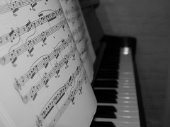 276/365 (and the bird took flight...) Tags: light blackandwhite bw music photoshop fur keys lumix blackwhite focus key day notes artistic elise flash year perspective piano overlay note musical 365 manual g3 276 yearly project365 365project 276365