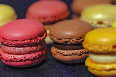 Love it!  Luxemburgerli  17/52 (Swissrock) Tags: color switzerland nikon sweet zurich loveit april zrich farben macaroons photomix 105mm luxemburgerli paradeplatz confiserie 2013 macroon d700 andykobel 52weeks2013 sprnli