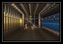 Tunnel of Mirrors (jta1950) Tags: windows dog chien pet pets abstract building dogs glass animal framed infinity canine dogportrait