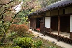 Kyoto Daitoku-ji (7)