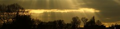 _C0A9273R Lightfall, Enlightenshade, Jon Perry, 9-4-14 (Jon Perry - Enlightenshade) Tags: sunset london gold horizon sunrays lightrays lookingwest lightfall goldsky treesilhouettes 9414 jonperry enlightenshade arranginglightcom 20140409 abovekewbridge