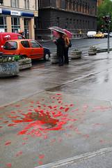 Sarajevo Rose (PM Kelly) Tags: street red art rain rose puddle blood war sarajevo battle sidewalk conflict scar 1990 siege