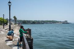Seaside park 5 (kmmanaka) Tags: japan harbor 5thavenue battleship usnavy nagasaki sasebo seasidpark