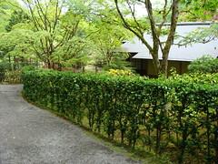 Seattle Japanese Garden (iagoarchangel) Tags: seattle japanesegarden washington arboretum washingtonpark