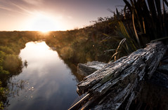The world is quiet here. (catrall) Tags: newzealand nature river landscape nikon quiet nz southisland hokitika nzl 2016 d90