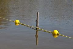 Lijntje (Ilona67) Tags: water geel plas hek lijn hff afzetting