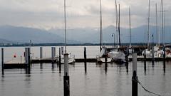 Bodensee (carla_hauptmann) Tags: holiday outside happy 50mm minolta sony urlaub bodensee glcklich f17 a5000 drausen