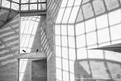 Mudam 8 (Photography Chronicles) Tags: mudam museum luxembourg luxembourgville luxembourgcity sonya77 modernartmuseum